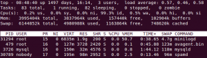 Linux Top Ordered by Swap Usage
